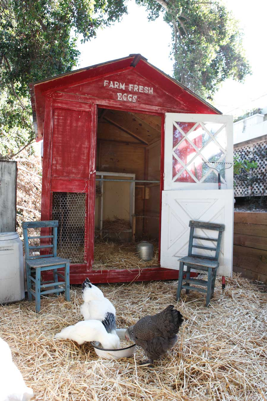 Best DIY Ideas With Chicken Wire   Woodland Chicken Coop   Rustic Farmhouse  Decor Tutorials With Chickenwire And Easy Vintage Shabby Chic Home Decou2026