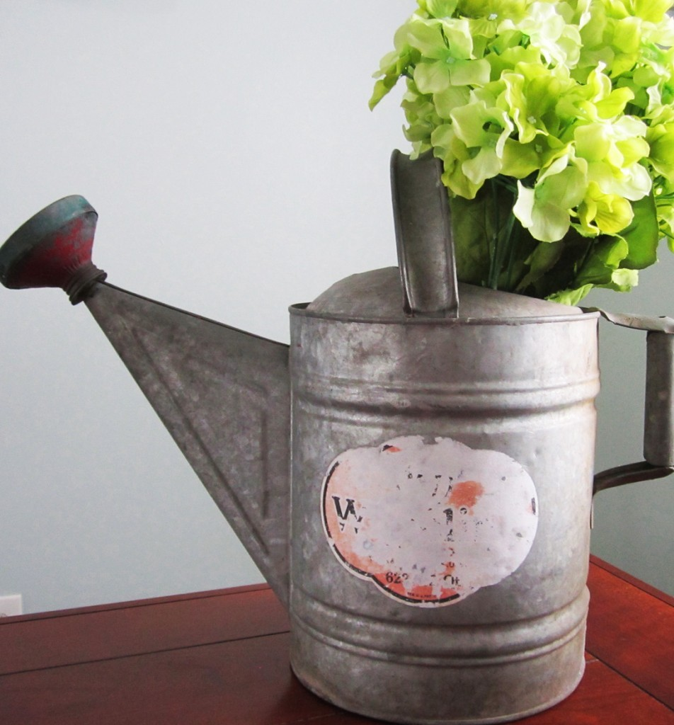 Hydrangeas displayed in a old galvanized watering can with faded label.