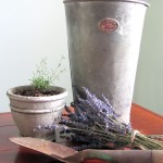 An old galvanized flower bucket shown with dried lavender and a rusty trowe