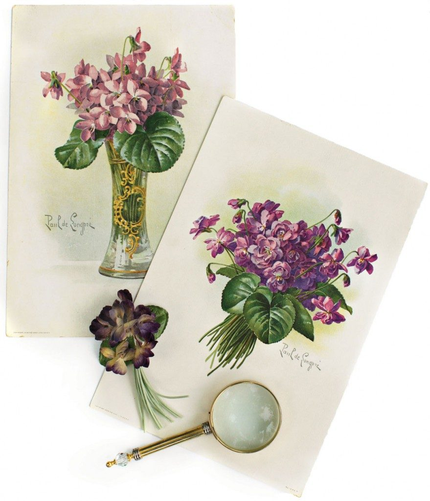 Antique Violet Prints by Paul de Longpre