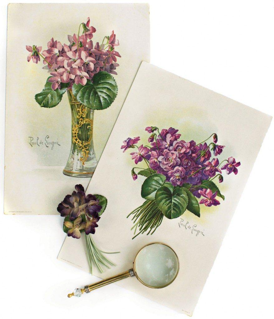 Antique Violet Prints by Paul de Longpre