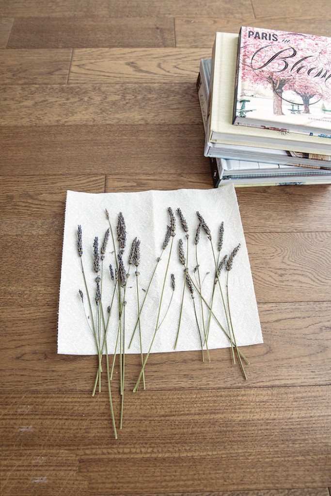 Dry the lavender by pressing it between paper towels and sandwiching it in a stack of heavy books. -Vintage French Decor by Jaimie Lundstrom