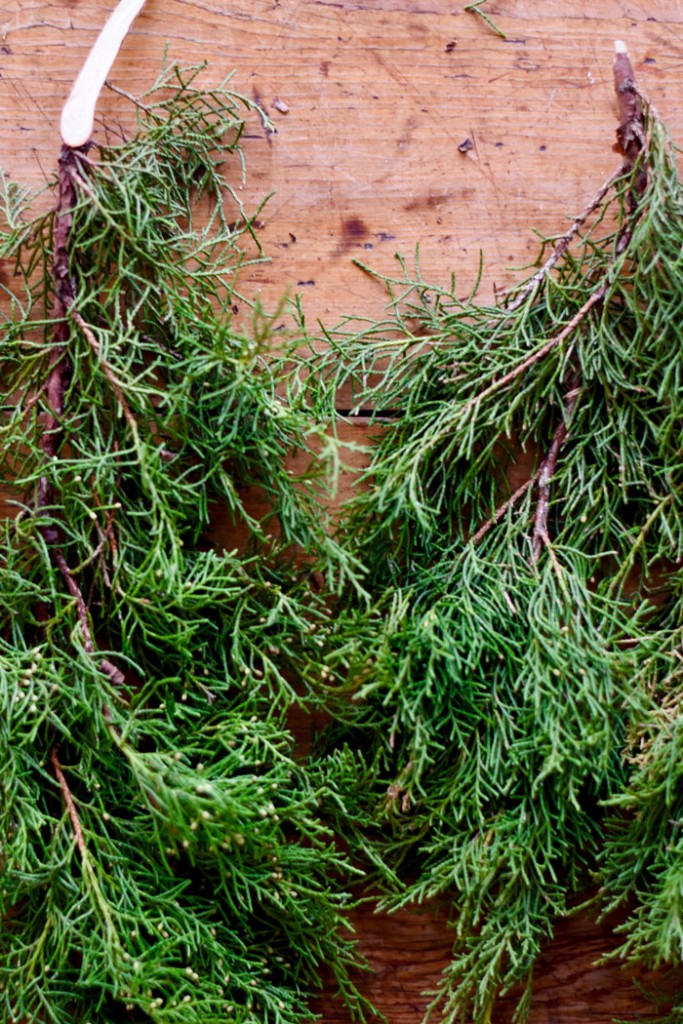 Create the base of your DIY Christmas wreath with evergreens that smell gorgeous.